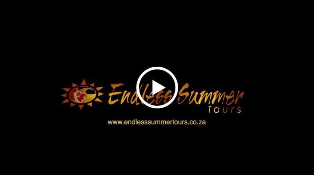 African safari tour video