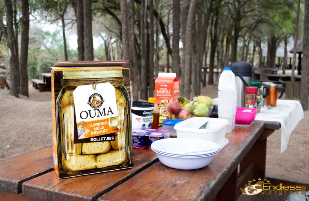 Having a Picnic at afsaal in the Kruger Park