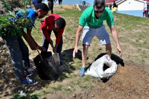 Anthony and students put the tree under ground, arbor week 2017